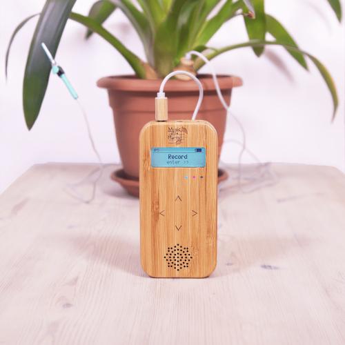 Музиката на растенията - Bamboo Basic