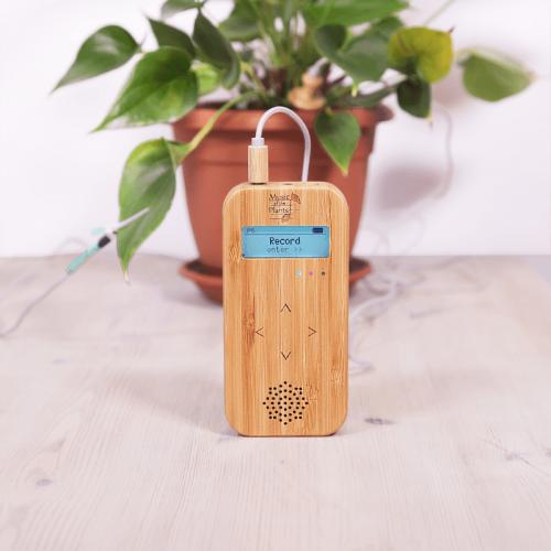 Muzyka roślin - Bamboo M